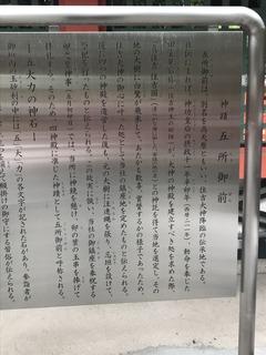IMG_5602.JPG